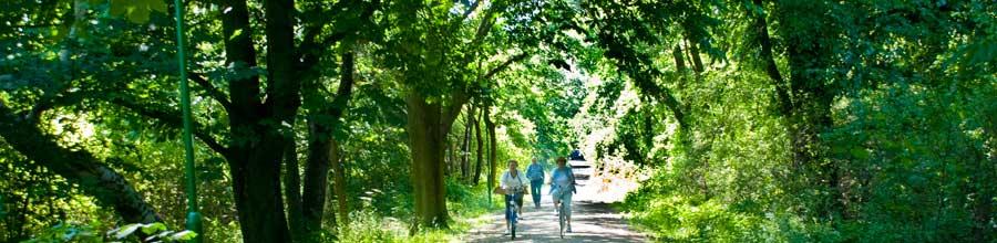 seeweg Blankensee
