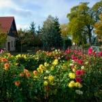 Garten im Dorf