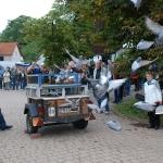 Museumsfest 2011 Taubenauflassung